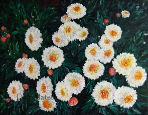A Collection of Mums